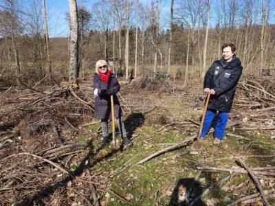 Baumpflanzaktion im Idsteiner Wald
